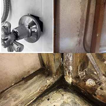 leakspotters gold coast shower leak damage - Why you shouldn't ignore minor leaks – It will cost you!